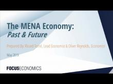 The MENA Economy: Past & Future